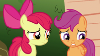 Scootaloo --I know what it's like to want something-- S6E19