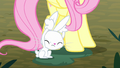 Angel plugs his ears with his tail fluff S8E18.png