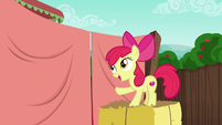 Apple Bloom --with my big sister-- S6E14
