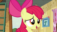 Apple Bloom -don't suppose either of you got yours-- S5E4
