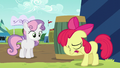 Apple Bloom puts her hoof on her face S5E17.png