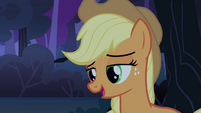 Applejack 'Why don't you sit' S3E06