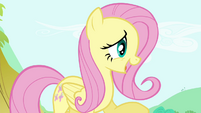 Fluttershy 'It's getting awfully late' S4E18