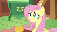 Fluttershy looking embarrassed at Discord S6E17