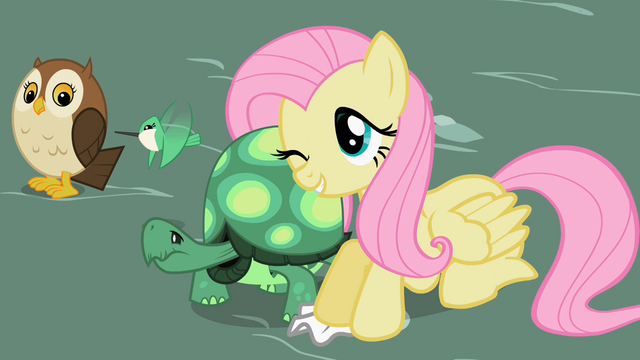 Файл:Fluttershy with Tank 2 S2E07.png