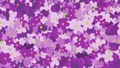 Lavender flowers cover the screen S7E10.png