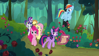 Main ponies walk through the Everfree Forest S8E13