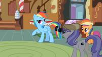 Rainbow Dash mill ponies S2E8