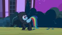 Rainbow Dash ninja S2E16