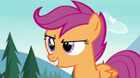 Scootaloo with a confident grin S7E21