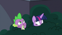 """Spike """"Twilight Sparkle in a library?"""" S9E5"""