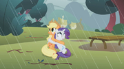 640px-Applejack and Rarity clinging together S01E08