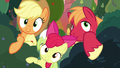 AJ, Apple Bloom, and Big Mac moving bushes aside S7E13.png