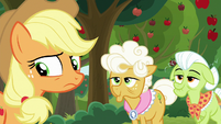Applejack looks behind at Goldie's cats S9E10