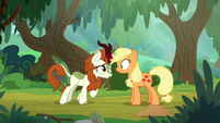 "Autumn Blaze ""that was too good"" S8E23"