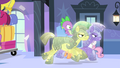 Crystal royal guards pick up Spike S4E24.png