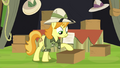 Daring Do collector packing up S4E22.png