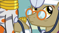 Dr. Horse listening to Zecora's heartbeat S7E20.png