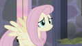 Fluttershy's smile turns into a frown S5E02.png
