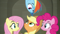 Fluttershy, Dash, AJ, and Pinkie exchange confused glances S6E9