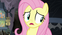 "Fluttershy ""I wasn't making my excited squeaking noise"" S7E20"