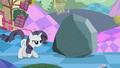 Grey Rarity guarding rock S2E2.png