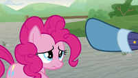 Guard Pony 1 tells Pinkie Pie to leave S9E14
