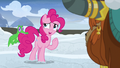 "Pinkie Pie ""I'm sure it'll be okay"" S7E11.png"