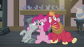 Pinkie with hooves around Mac and Marble S5E20.png