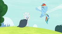 "Rainbow Dash ""nailed it!"" S7E19"