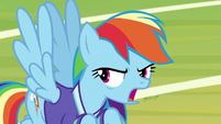 Rainbow Dash -oh, forget it- S8E17