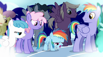 Rainbow Dash and relative 2 S3E12