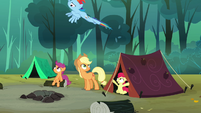 Rainbow Dash flying upwards S3E06