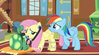 Rainbow biting her lip while Fluttershy examines Tank S5E5