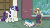 "Rarity ""emergency at the boutique"" S8E4"