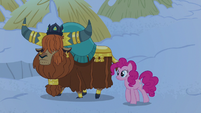 Rutherford and Pinkie walk to new sleeping hut S7E11