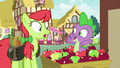 Spike pops out of apples in front of Peachy Sweet S7E15.png