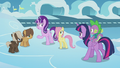 """Starlight """"just reminding these two colts"""" S5E25.png"""