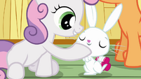 Sweetie Belle touching Angel S3E11