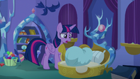 "Twilight Sparkle ""what are you doing?"" S8E11"