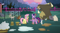 Twilight and Fluttershy surrounded by clean animals S5E3