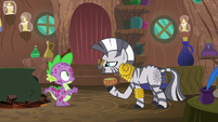 "Zecora ""the smell is the most likely cause"" S8E11"