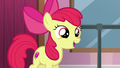 "Apple Bloom ""you're doin' it together"" S6E4.png"