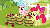 Apple Bloom and Cozy with buckets of apples S8E12
