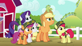 Applejack gives Rainbow Dash a warning S6E15.png