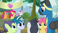 Crusaders watch foals interact with Thunderlane S7E21.png
