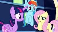 "Fluttershy ""it must be a really important one"" S8E15"