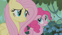Fluttershy and Pinkie Pie worried S1E09