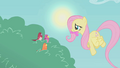 Fluttershy brings worms for the birds S1E07.png