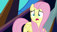 Fluttershy gasping in sheer horror S9E2
